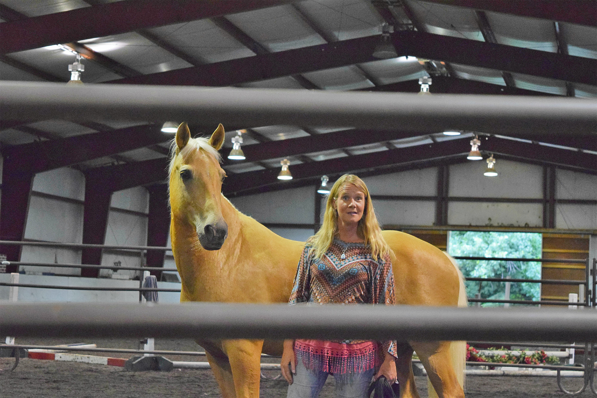 13_hands_equine-Anna-Twinney-Clinic-1