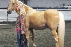 13_hands_equine-Anna-Twinney-Clinic