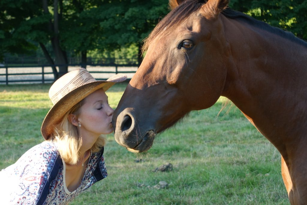 13_hands_equine_rescue_therapy_program_chief